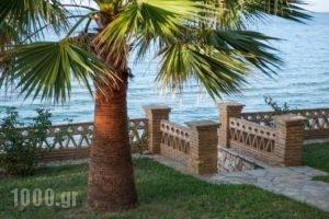 Playa Del Zante_best deals_Room_Ionian Islands_Zakinthos_Alykes