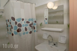 Alisaxni Studios_holidays_in_Apartment_Ionian Islands_Zakinthos_Argasi