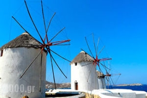 Mykonos Tourist guide, catalog and travel guide, catalogue for Greece, 1000.gr