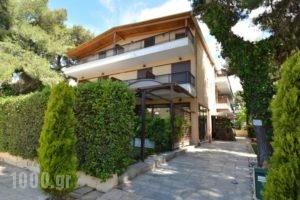 Hotel Chris_best deals_Hotel_Central Greece_Attica_Athens