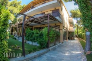 Hotel Chris_accommodation_in_Hotel_Central Greece_Attica_Athens