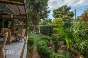 Hotel Chris_holidays_in_Hotel_Central Greece_Attica_Athens